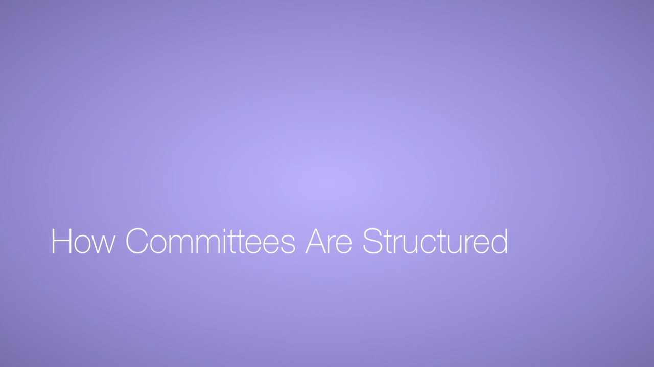 How Committees Are Structured Video Icon