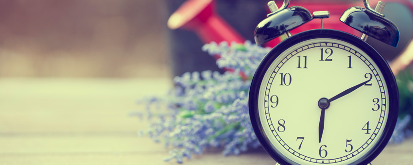 Time saving strategies for a busy spring